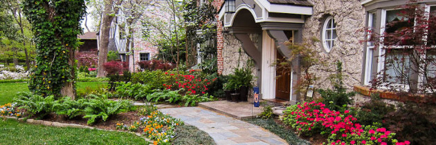 How The Right Landscaping Renovation Boosts Curb Appeal And Increases Property Value