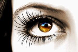 Elegant Eyelashes
