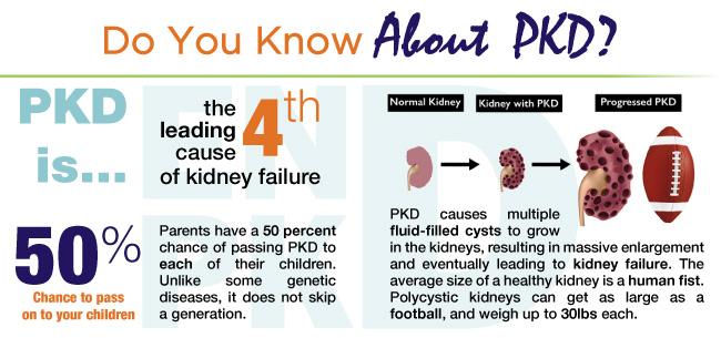 What Is PKD?